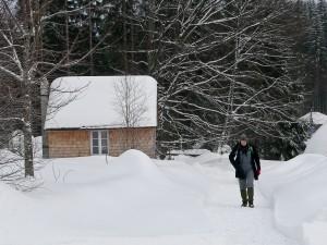 Thoreau-Hütte im Wildniscamp