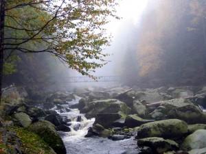 Weite Moore, wilde Flüsse